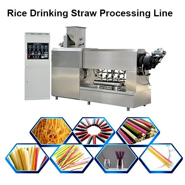 Rice Drinking Straw Making Extruder Machine / Sustainable Eco Friendly Products Processing ... #1 image