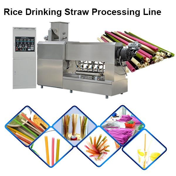 Non Plastic Drinking Straw Extruder Processing Machinery Rice Pasta Straws Manufacturing ... #1 image