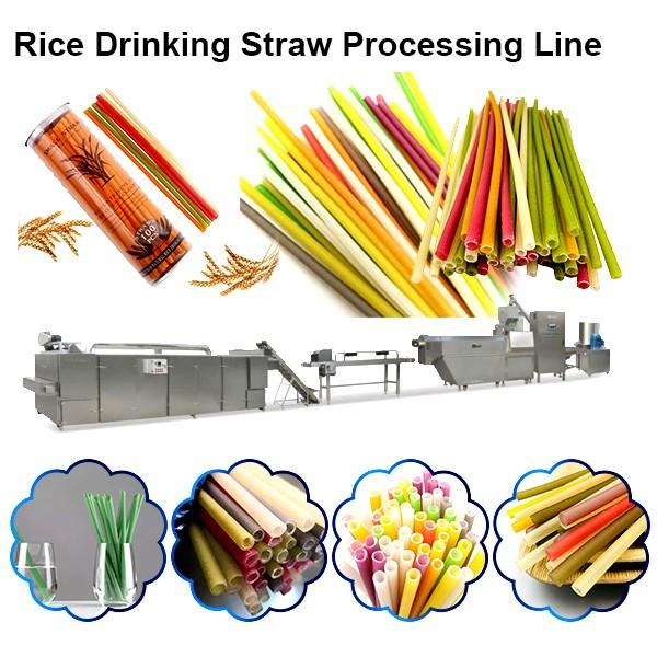 Automatic Pasta Straw Machine Rice Straw Extruder #1 image